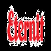 ETERNIT S.A. (ETER3)